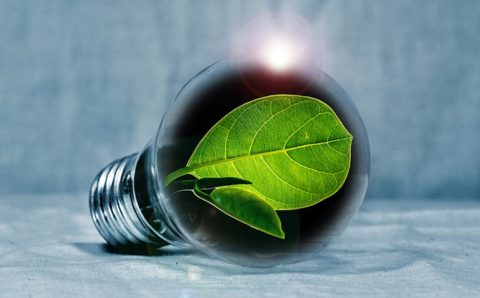 green energy tips
